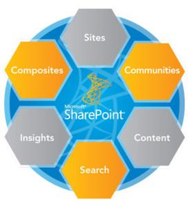 SharePoint-Business Collaboration Software
