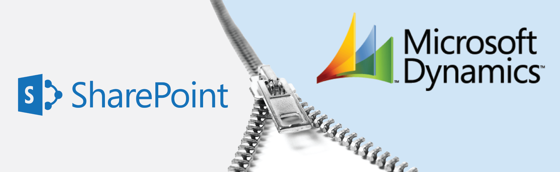 SharePoint Software Requirements | DynamicPoint